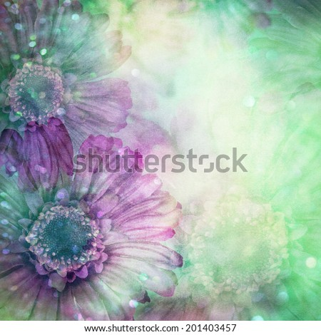 Gerber flower on old paper texture. - stock photo