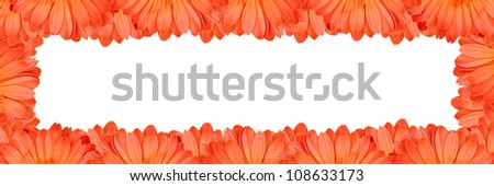 Gerbera flower create a frame on white background - stock photo