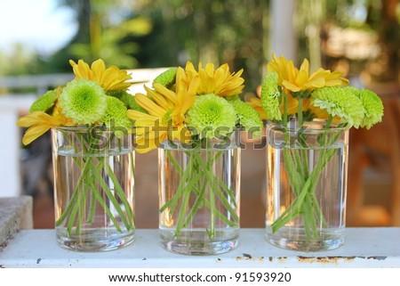 gerbera flowers - stock photo