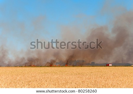 German Firefighter battling a fire, that  quickly raging across a field in the south of Brandenburg. - stock photo