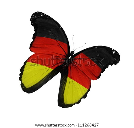 German flag butterfly flying, isolated on white background - stock photo
