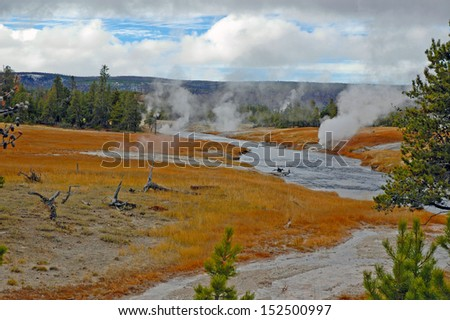 Geyser Landscape with Thermophilic Bacteria, Yellowstone National Park, USA - stock photo