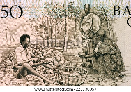 GHANA - CIRCA 1980: Men Splitting Cacao Pots on 50 Cedis 1980 Banknote from Ghana. - stock photo