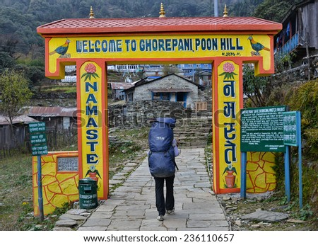 GHOREPANI - NOVEMBER 17: Nepali porter arrives at a mountain village on November 17, 2014 in Ghorepani, Nepal. Porters are an invaluable part of a trekking with a salary of only 4-5 US dollars per day - stock photo