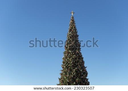 Giant Christmas tree against blue sky  - stock photo