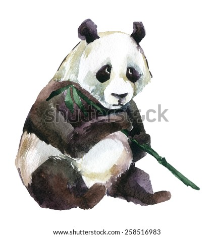 Giant panda with bamboo, watercolor illustration - stock photo