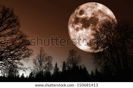 giant red moon rise over dark northern forest - stock photo