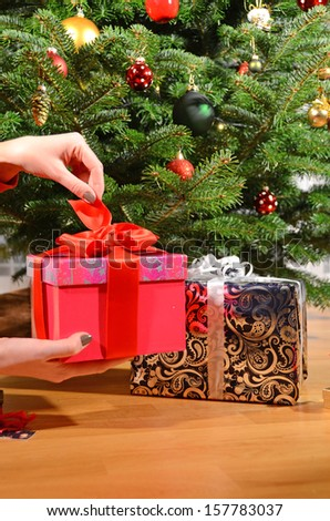 Gift box in the hands under the Christmas tree  - stock photo