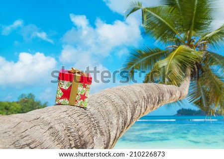 Gift box with bow on coconut palm tree at exotic tropical beach - holiday presents or discounts for travel tours concept - stock photo