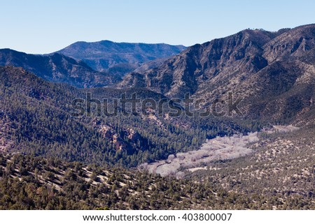 Gila River valley wilderness landscape in Gila Mountains National Forest, New Mexico, NM, US - stock photo