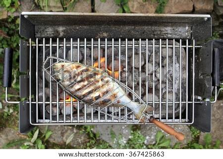 gilthead seabream in fish basket on barbecue - stock photo