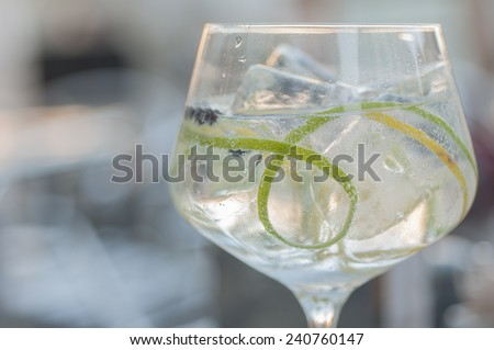 Gin and tonic with lime ice and other fruits - stock photo