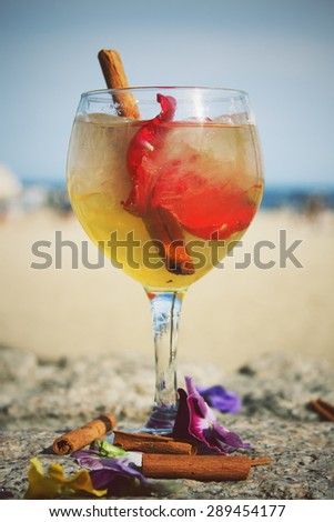 Gin Tonic cocktail with cinnamon and rose petal - stock photo