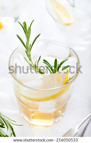 Gin,tonic, lemon, rosemary fizz, cocktail with honey and fresh herbs on a white background. - stock photo