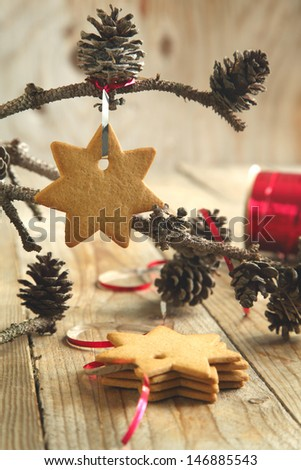 Gingerbread cookie hanging on branch with pine cones . Selective - stock photo