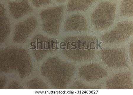 Giraffe skin texture for backgrounds. - stock photo