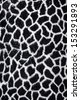 Giraffe texture in black and white - stock photo