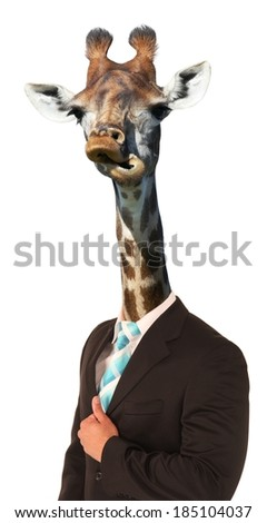 Giraffe with long neck and awkward look on man's body - stock photo