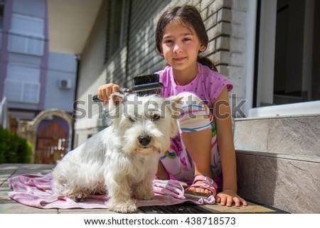 Girl brushing dog - stock photo
