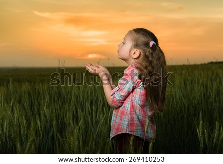 girl child portrait in the field at sunset - stock photo