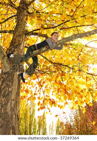 girl hanging from branch of tree - stock photo