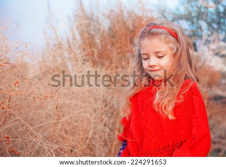 Girl in a red poncho on a background of autumn landscape - stock photo