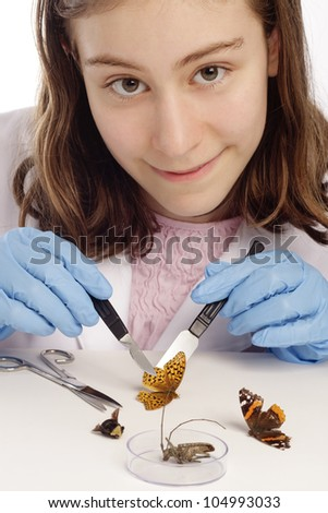 Girl is inspecting insects and butterflies while looking at the camera.  She is wearing blue gloves. - stock photo