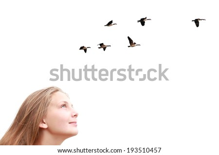 Girl looking upwards at flying birds isolated on a white background  - stock photo
