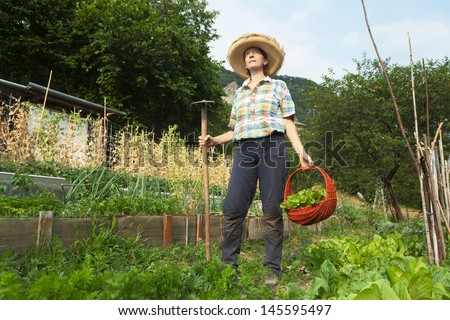 girl picking the fruit from their country - stock photo