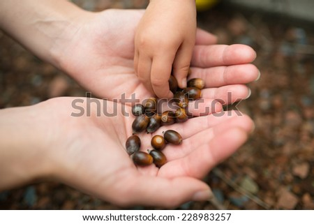 Girl playing with fallen leaves - stock photo