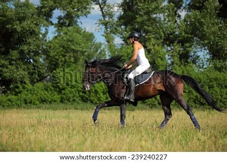 Girl riding bay dressage horse - stock photo