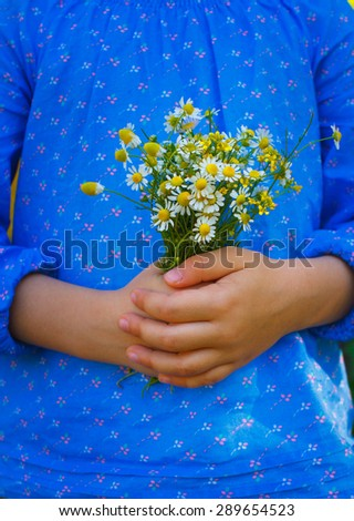 Girl's hand with a camomile flowers - stock photo