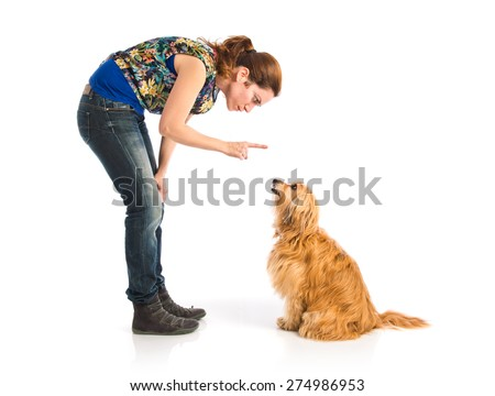 Girl training a dog - stock photo