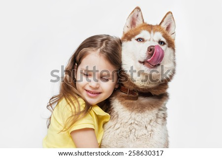 Girl with a husky, on a gray background - stock photo