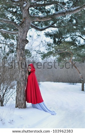 Girl with a red cloak in the terrible forest - stock photo