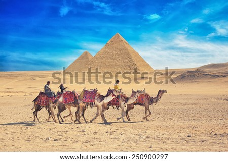 GIZA, EGYPT - JAN 31, 2015: Bedouins on camel near of great pyramid in egypt - stock photo