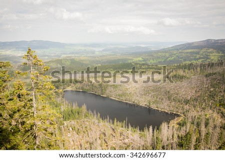 glacial lake Plesne surrounded by dead forest devastated by hurricane - natural park Bohemian forest - top view - stock photo