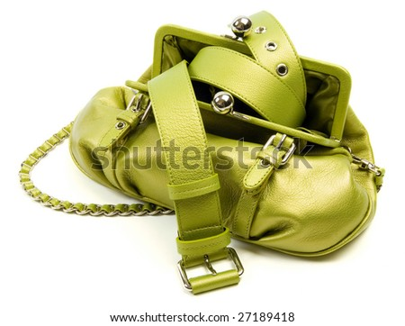 Glamour green bag 3 - stock photo