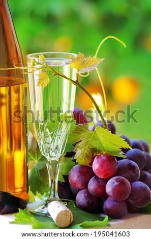 Glass and bottle of alvarinho wine - stock photo