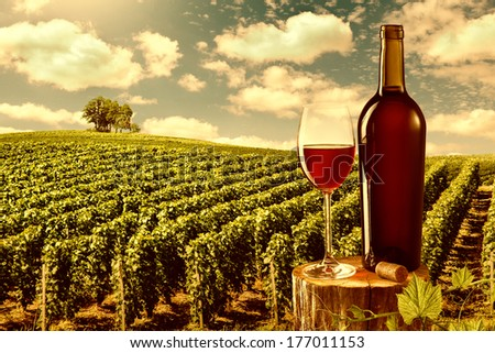 Glass and bottle of red wine against vineyard landscape - stock photo