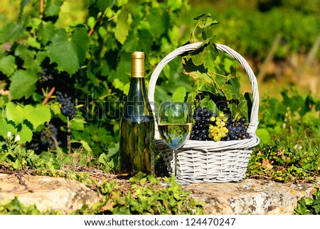 glass and bottle of wine and grappes in basket - stock photo