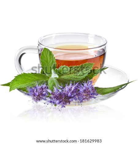 Glass Cup Tea with Mint Leaf and Herbs Flowering, Isolated on White Background - stock photo