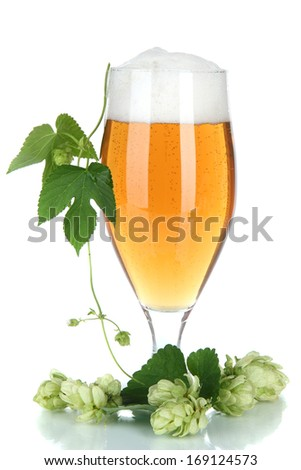 Glass of beer and hops, isolated on white - stock photo