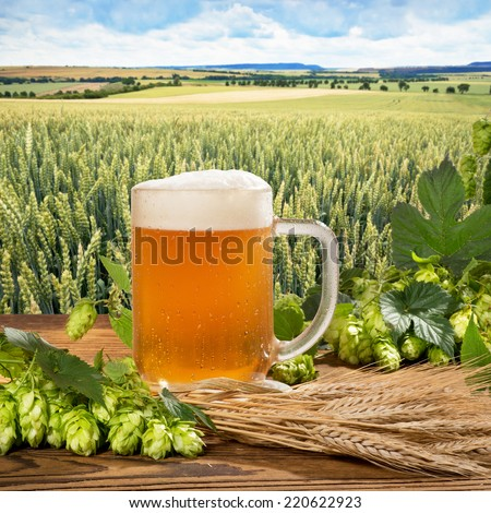 glass of beer with raw material for beer prodiction - stock photo
