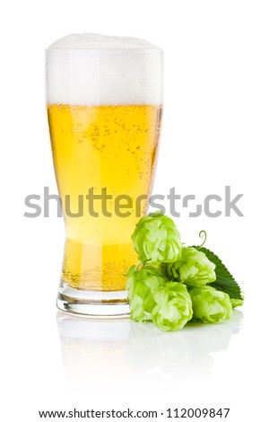 Glass of fresh beer with Green hops isolated on a white background - stock photo