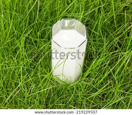 Glass of fresh milk on green grass - stock photo