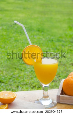 Glass of freshly pressed orange juice and slices of orange on wood and green grass - stock photo