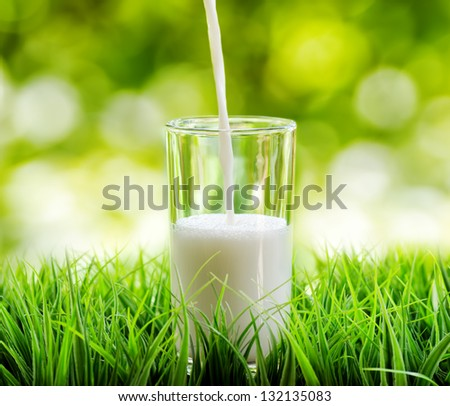 Glass of milk on nature background. - stock photo