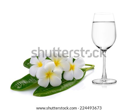 Glass of water and Tropical flowers frangipani (plumeria) - stock photo