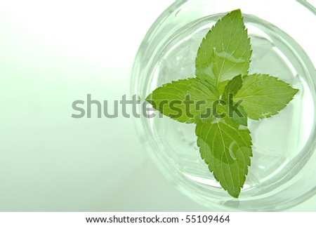 Glass of water with fresh mint, slightly green toned - stock photo